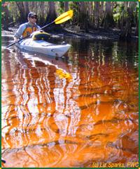 paddling200x240